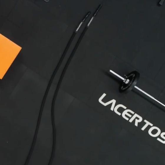 LacertosusCompany Profile